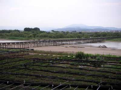 nagarebashi5.jpg